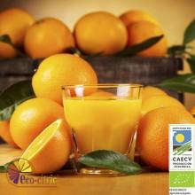 Naranja Zumo Ecológica 20 Kg